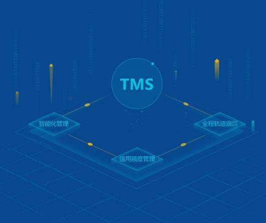 国际货代TMS系统